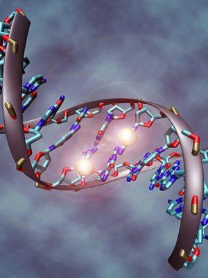 1200px-DNA_methylation-Copy.jpg